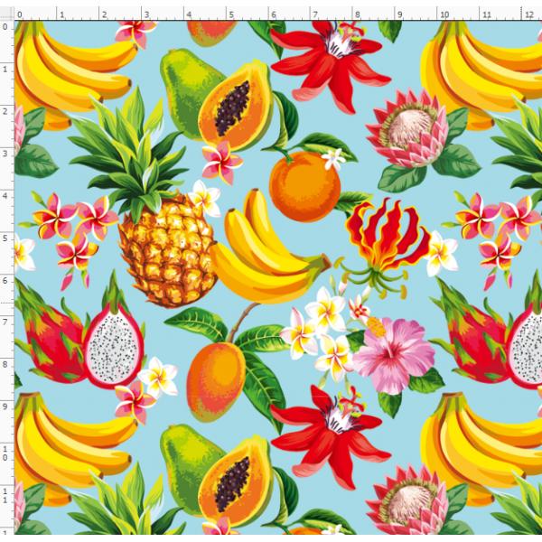 4-24 fruit